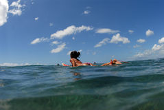 Paddle out. A teen girl in bikini paddling out royalty free stock photography