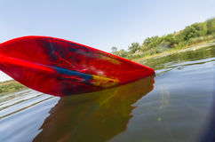 Paddle. Red paddle for  rafting and kayaking Royalty Free Stock Images