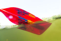 Paddle. Red paddle for  rafting and kayaking Stock Photos