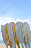Paddle. Selective focus of many plastic paddle kayak oars royalty free stock images