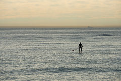 Paddle surf Royalty Free Stock Image