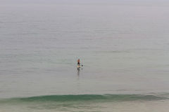 Paddle Surf Royalty Free Stock Images