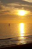 Paddleboard på solnedgången Arkivfoto