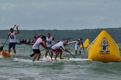Paddleboard Race. The New Zealand Paddleboard Festival and Competition, Takapuna Beach, Auckland, New Zealand Royalty Free Stock Photos