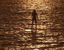 Paddleboarder en silhouette Photos stock