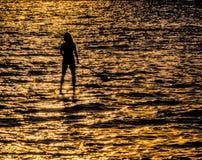 Paddleboarder na silhueta imagem de stock