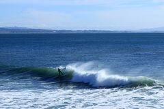 Paddleboarder Rides the Wave in Santa Cruz. A paddleboarder rides the wave in Santa Cruz, CA Royalty Free Stock Photo