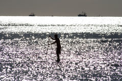 Paddleboarder silhouette Stock Images