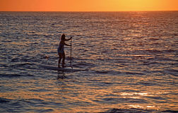 Paddleboarder at Woods Cove Beach in Laguna Beach, California. Royalty Free Stock Photography