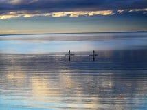 Paddleboarders на сумраке Стоковые Фото