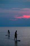 Paddleboarders / Paddle Boarding at Sunset. Silhouette of two paddleboarders / paddle boarders at sunset Royalty Free Stock Image