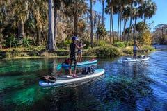 Free Paddleboarding At Ocala Florida`s Silver Springs Stock Image - 139867501