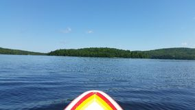 Paddleboarding on a lake in Canada. Quebec, midday with the sun up Royalty Free Stock Image