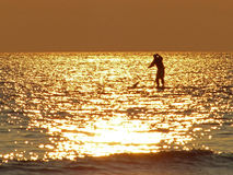 Paddleboarding At Sunset Stock Photography