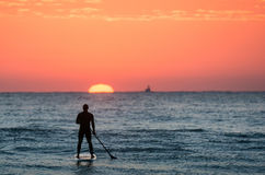 Paddleboards photos stock