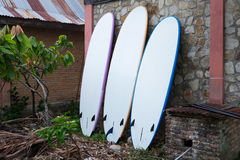 Paddleboards for rent. Royalty Free Stock Images