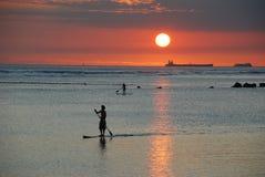 Paddler захода солнца Стоковые Фото