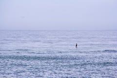 Paddler allein auf dem Ozean Lizenzfreie Stockfotografie
