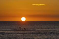Paddler in piedi sul oean sull'isola di Maui Fotografia Stock Libera da Diritti