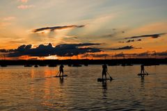 Paddler três de pé no lago Starnberg, Baviera, no por do sol Fotografia de Stock