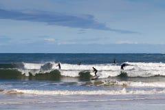 Paddlers dans des combinaisons de plongée noires faisant le support barbotant chez Torqua photographie stock libre de droits