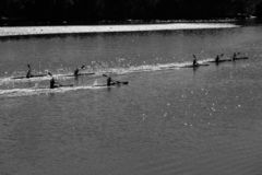 Paddlers de canoë-kayak de rivière formant le paysage aérien image libre de droits