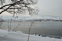 Paddlers de kayak sur le fjord avec des canards nageant image stock
