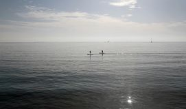 Paddlers at midday in the bay of palma in the island of mallorca Royalty Free Stock Photo