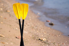 Paddles Stock Photography