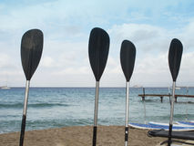 Paddles on a beach and blue sky. Royalty Free Stock Photo