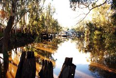 Paddlesteamers in Echuca Moama Stock Image