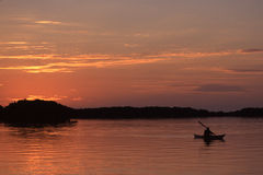 Paddling. At sunset in Everglades National Park Florida royalty free stock images
