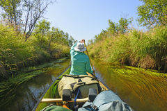 Paddling Down a Wilderness River Stock Photography