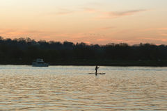 Paddling at Dusk Silhouette. Paddle boarder silhouetted on the calm water of the Potomac River at dusk in the Springtime stock images