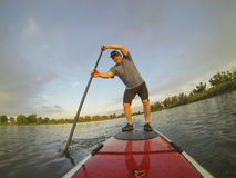 Paddling stand up board. Mature male paddler enjoying workout on stand up paddleboard (SUP), calm lake in Colorado, summer Stock Images