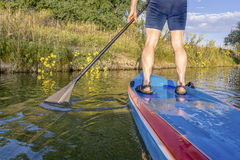 Paddling stand up paddleboard Royalty Free Stock Image