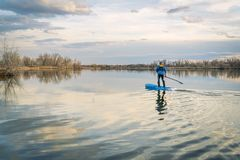 Paddling stand up paddleboard on a calm lake. Early spring scenery in northern Colorado Stock Image