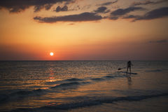 Paddling at Sunset Royalty Free Stock Photography
