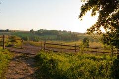 paddock лошадей Стоковое Изображение