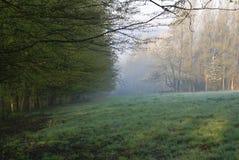 paddock рассвета Стоковая Фотография RF