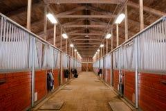 Paddock спорта амбара лошади ранчо животного конноспортивное участвуя в гонке конюшня Стоковая Фотография RF