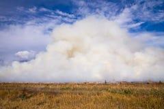 Paddock Fire Stock Image