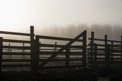 Paddock gate sunrise silhouette Royalty Free Stock Image