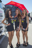 Paddock Girls Stock Images