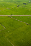 Paddy. Aerial fields Royalty Free Stock Photos