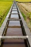 Paddy Field e canale, Sekinchan, Malesia Immagine Stock