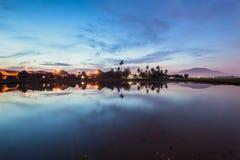 Paddy Field em Bukit Mertajam Penang, Malásia Imagens de Stock