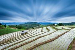 Paddy Field en terrasse dans le village de Mae-confiture, Chaingmai Images stock