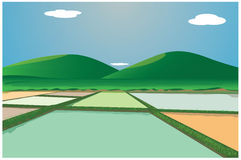 Paddy field. With mountain design vector illustration