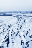 Paddy field natural scenery in the snow Stock Images